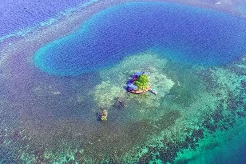 Bird Island- Belize 1