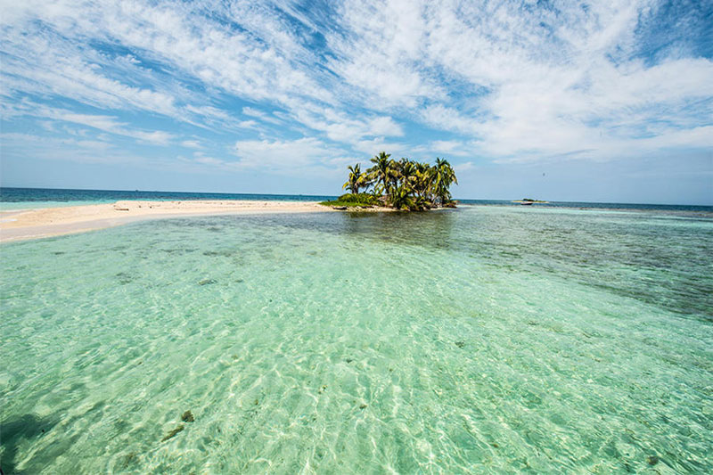 Bird Island- Belize 4